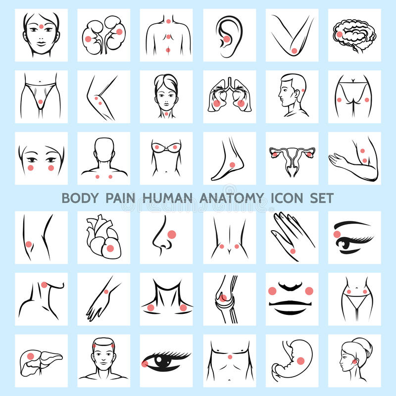 Body Pain Human Anatomy Icons Stock Vector - Illustration of health ...