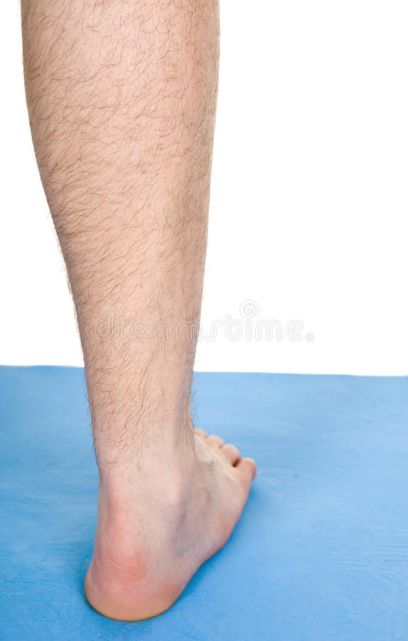 Download Body parts stock image. Image of body, barefoot, adult - 11863019