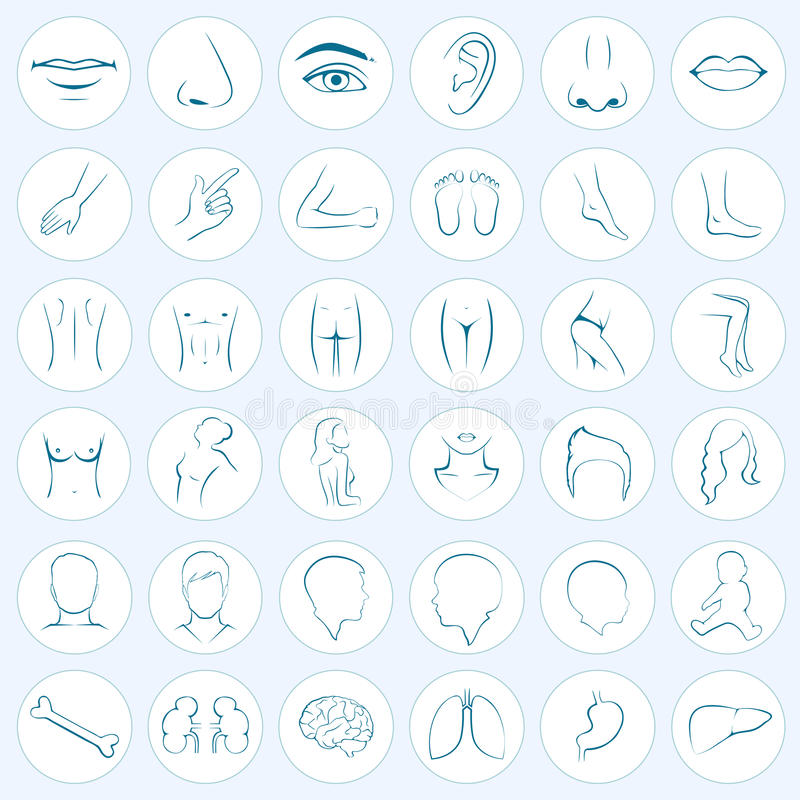 Free Body Parts, Five Senses Royalty Free Stock Images - 43847789