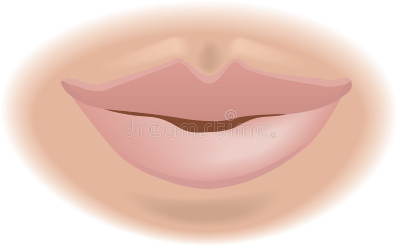 Body parts mouth. An illustration of a human mouth, no meshes used royalty free illustration