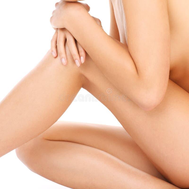 Download Body shot stock photo. Image of lady, body, sitting, erotic - 39504318