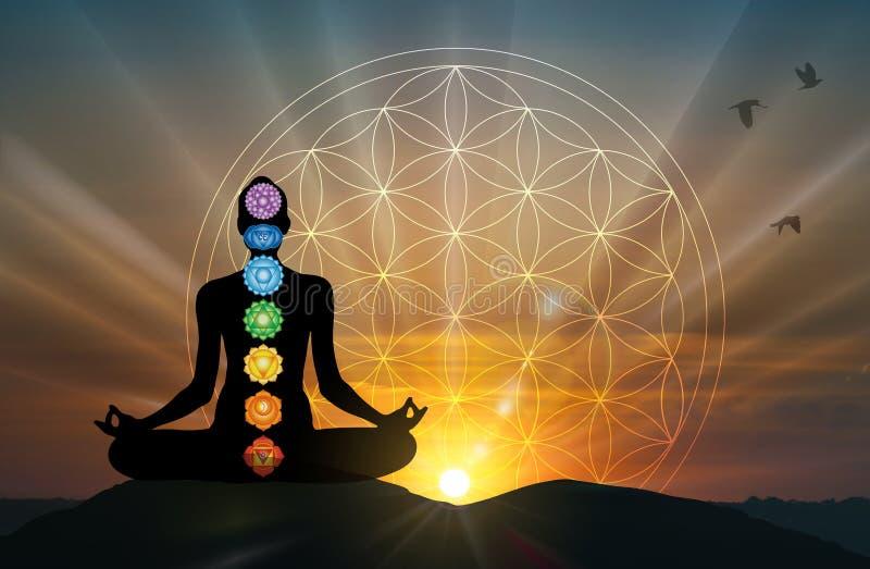 Human body yoga, meditation, chakra spiritual energy healing, flower of life. Body silhouette practicing meditation, contemplating to the universe, cosmic royalty free illustration