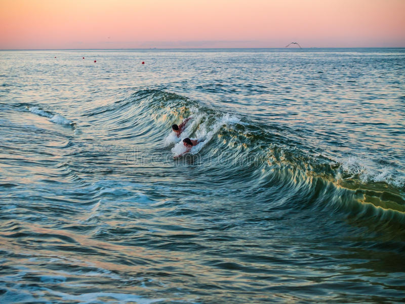 Body Surfing at Dusk royalty free stock images
