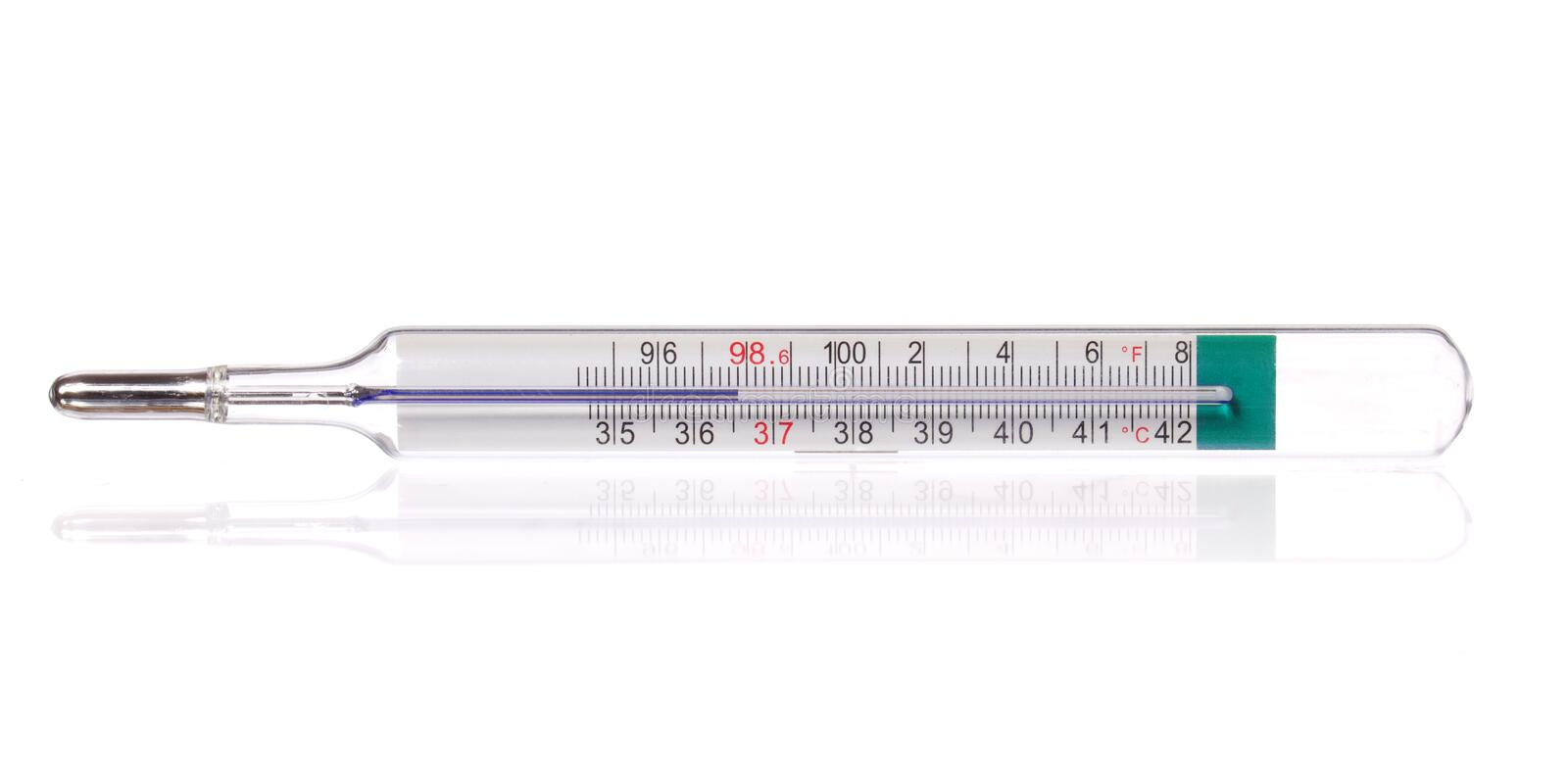 Body thermometer displaying healthy human body temperature 36. 6 gradis Celsius and 98. 6 grades Fahrenheit, isolated stock photo