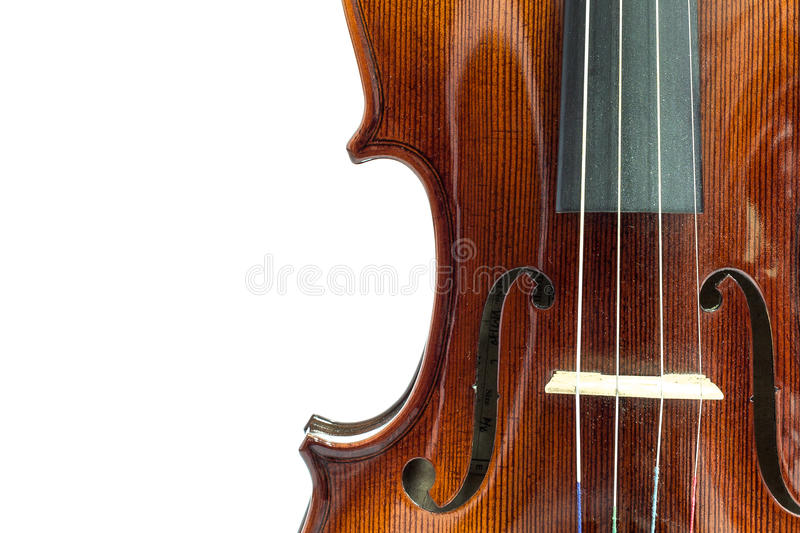 Body of violin. On a white background royalty free stock image