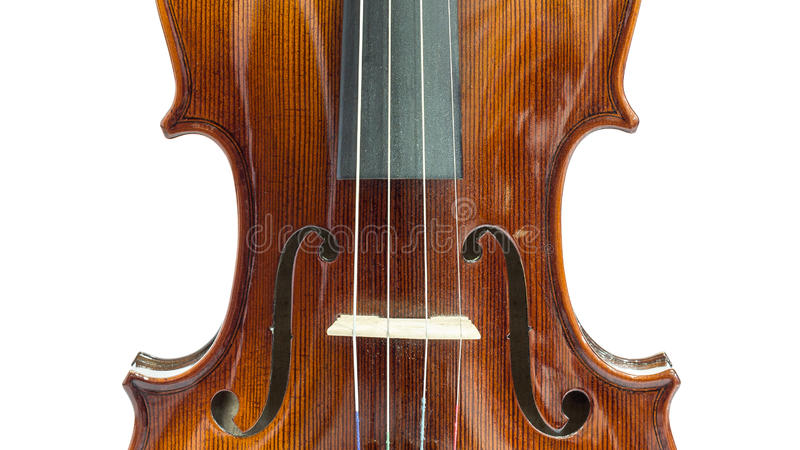 Body of violin. On a white background stock photos