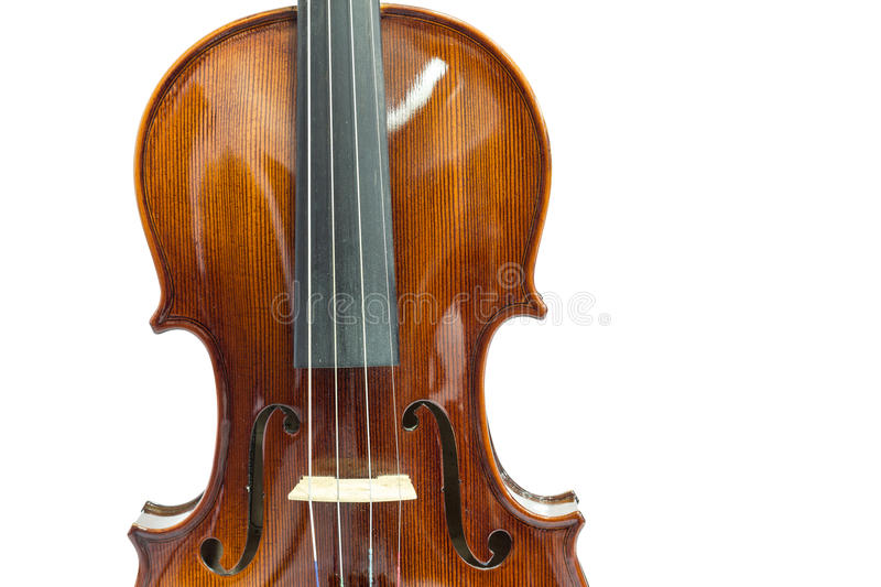 Body of violin. On a white background stock photography