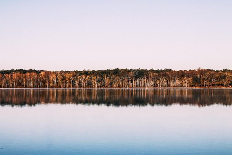 Body Of Water Beside Brown Trees During Dusk Free Public Domain Cc0 Image