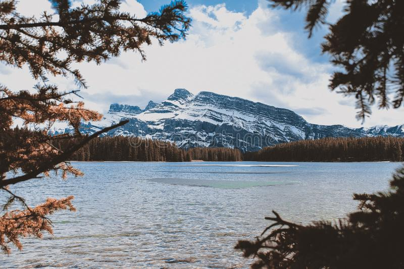 Body of Water Beside Brown Trees Near Mountain royalty free stock image