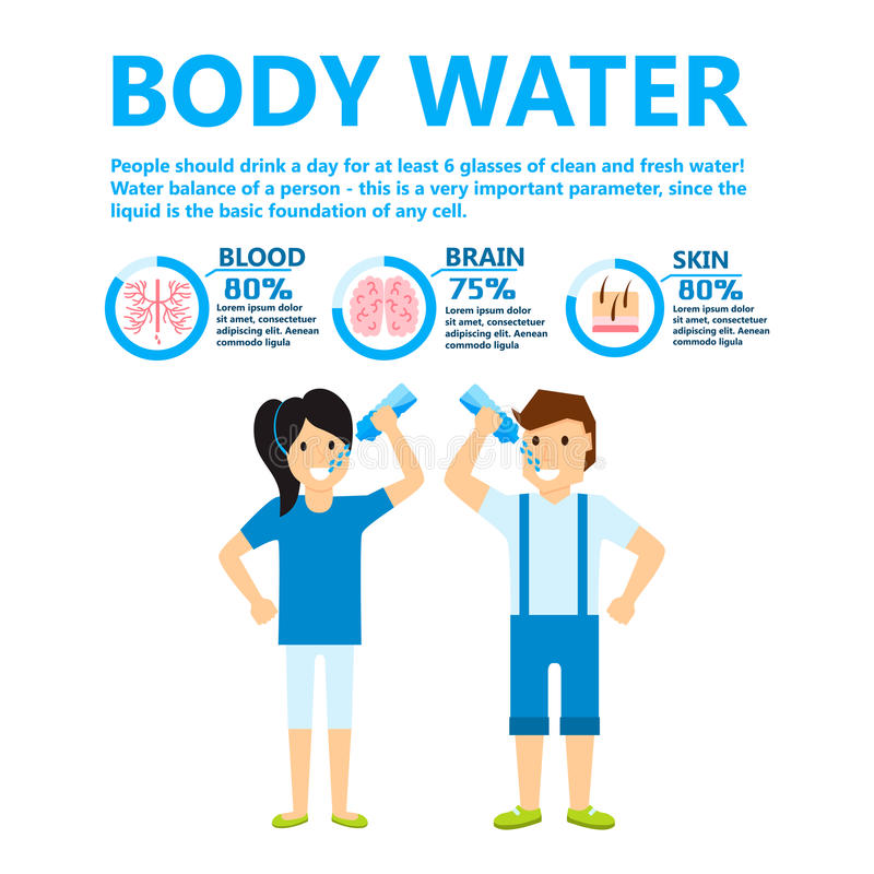 Body water drink infographics health people diet lifestyle concept brochure infochart vector illustration. Info healthcare hydrate layout report graphic vector illustration