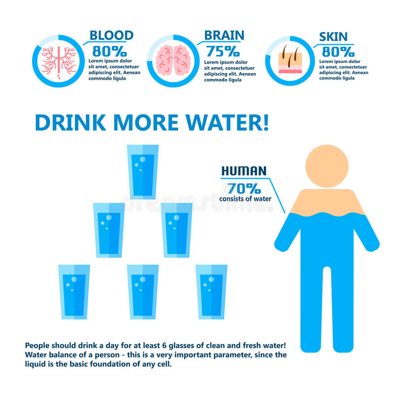 Body water drink infographics health people diet lifestyle concept brochure infochart vector illustration. Info healthcare hydrate layout report graphic stock illustration