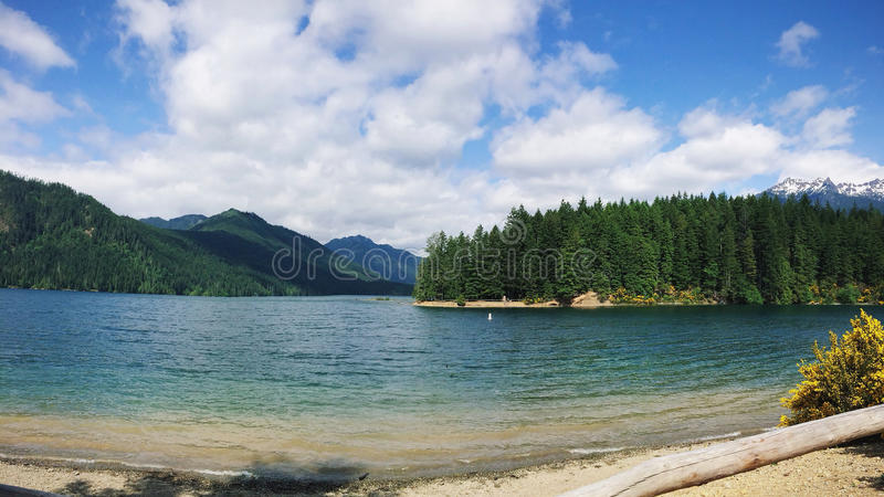 Download Body Of Water Beside Forest Stock Image - Image of nature, photo: 83021427