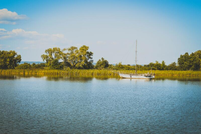 Body Of Water And Green Trees And Weeds Free Public Domain Cc0 Image