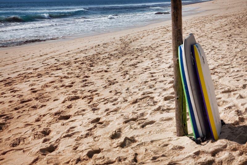 Bodyboards на пляже стоковые изображения rf