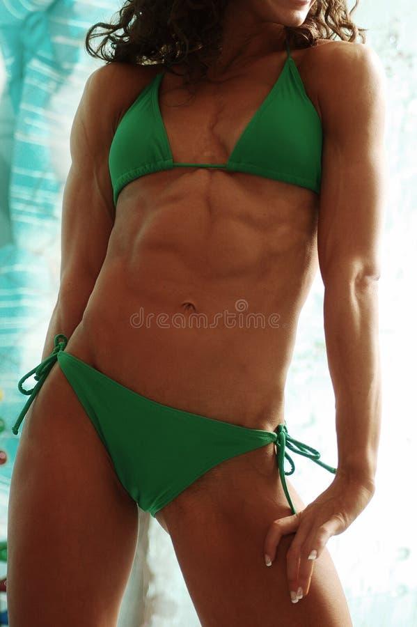 bodybuilder θηλυκό στοκ εικόνα με δικαίωμα ελεύθερης χρήσης