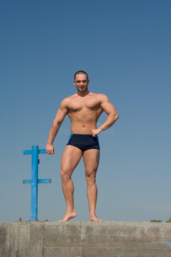 bodybuilder νεολαίες στοκ φωτογραφία με δικαίωμα ελεύθερης χρήσης
