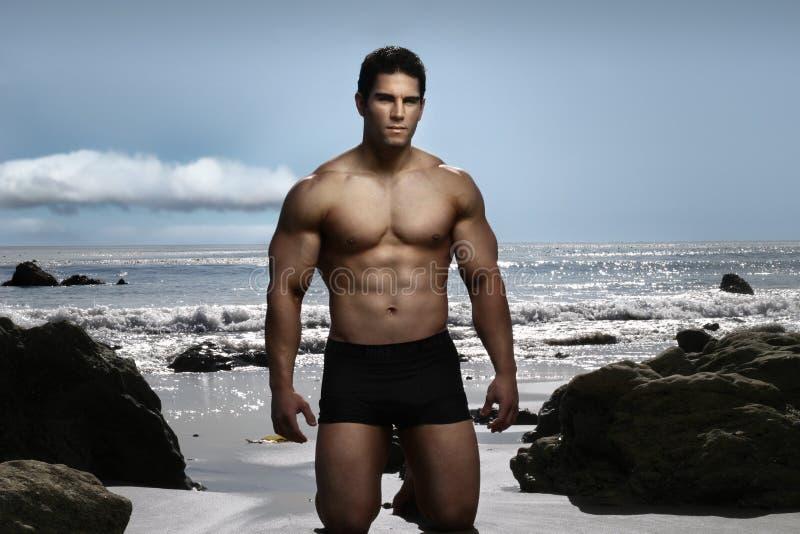 bodybuilder στεμένος στοκ φωτογραφία με δικαίωμα ελεύθερης χρήσης