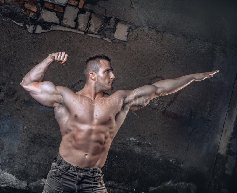 Bodybuilder στον τοίχο grunge στοκ εικόνες