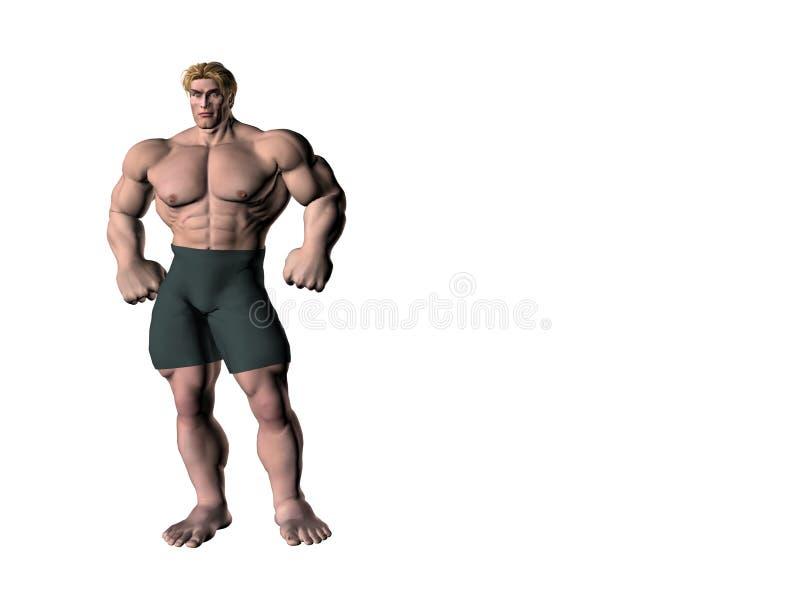 Download Bodybuilder 11 ilustração stock. Ilustração de atrativo - 527483