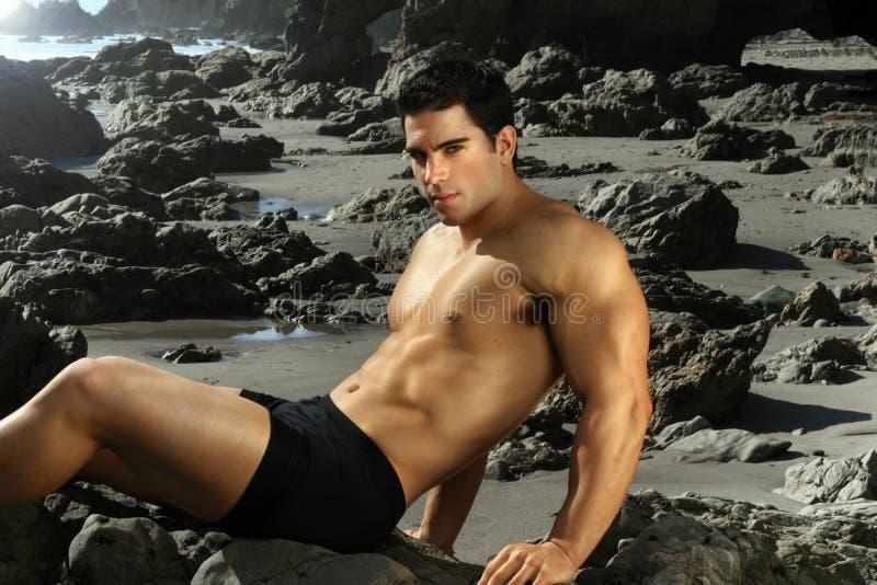 bodybuilder στοκ φωτογραφία