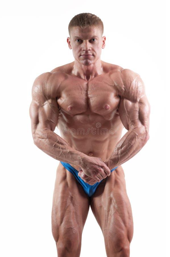 Bodybuilder lizenzfreie stockbilder