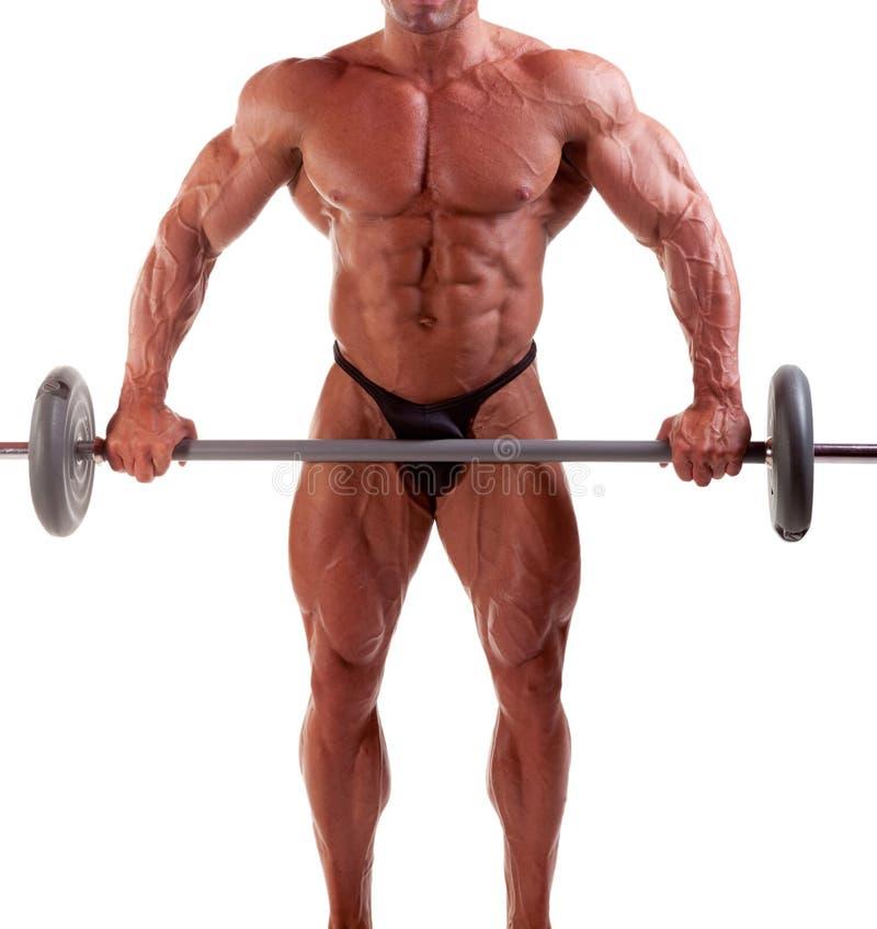 bodybuilder fotografia royalty free