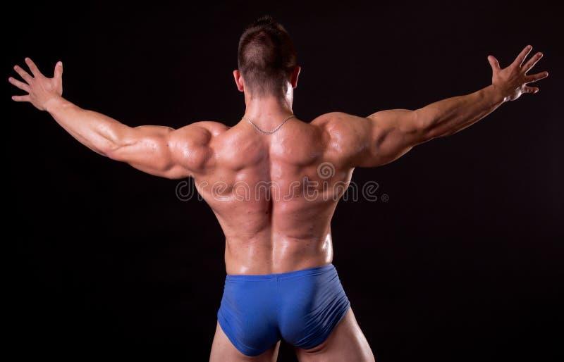 Bodybuilder immagini stock