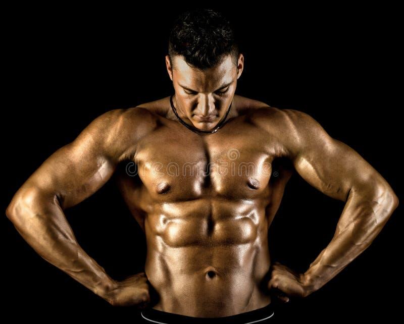 Bodybuilder στοκ φωτογραφίες με δικαίωμα ελεύθερης χρήσης