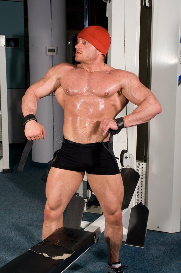 bodybuilder zdjęcie royalty free