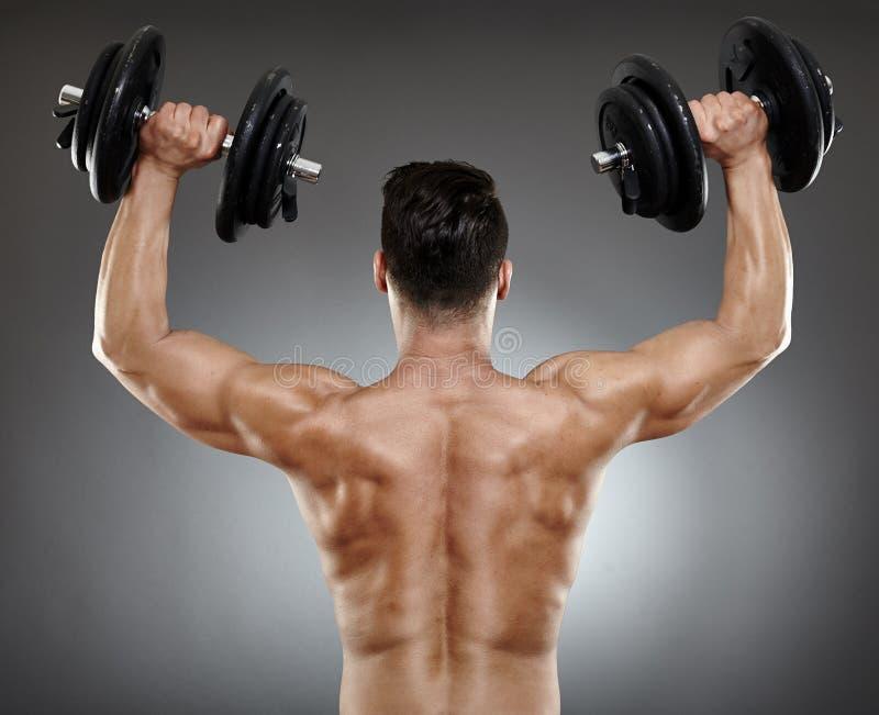 Download Bodybuilder Back With Dumbbells Stock Image - Image: 39893175