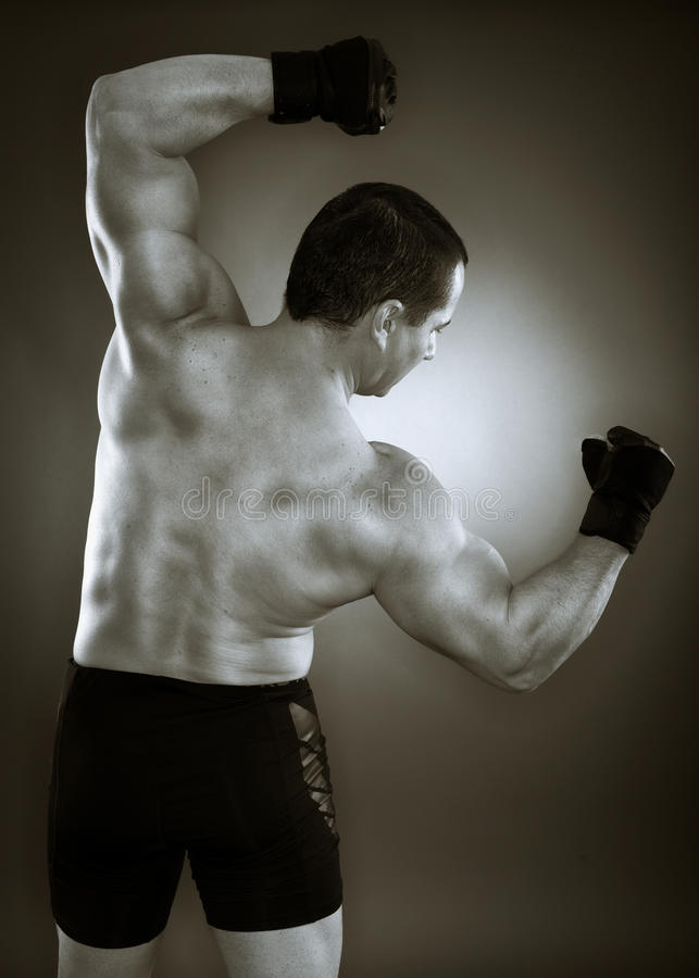 Download Bodybuilder back stock image. Image of caucasian, masculinity - 39056899