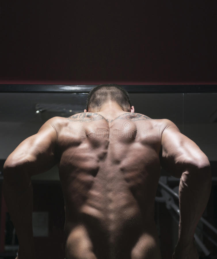 Bodybuilder from back stock photography