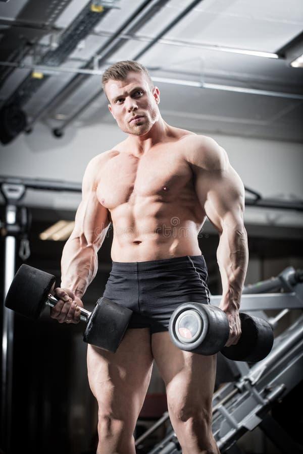 Bodybuilder dans le gymnase à la formation de forme physique avec des barbells photo libre de droits