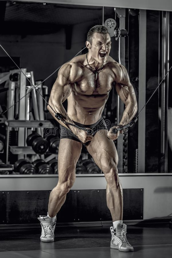 Bodybuilder de type avec le barbell images libres de droits