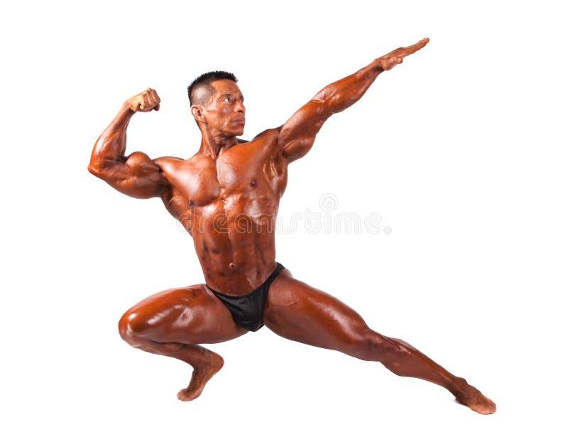 Bodybuilder, der auf einem weißen Hintergrund aufwirft lizenzfreie stockfotos