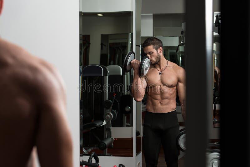 Bodybuilder, der Bizeps mit Dummköpfen ausübt lizenzfreies stockbild