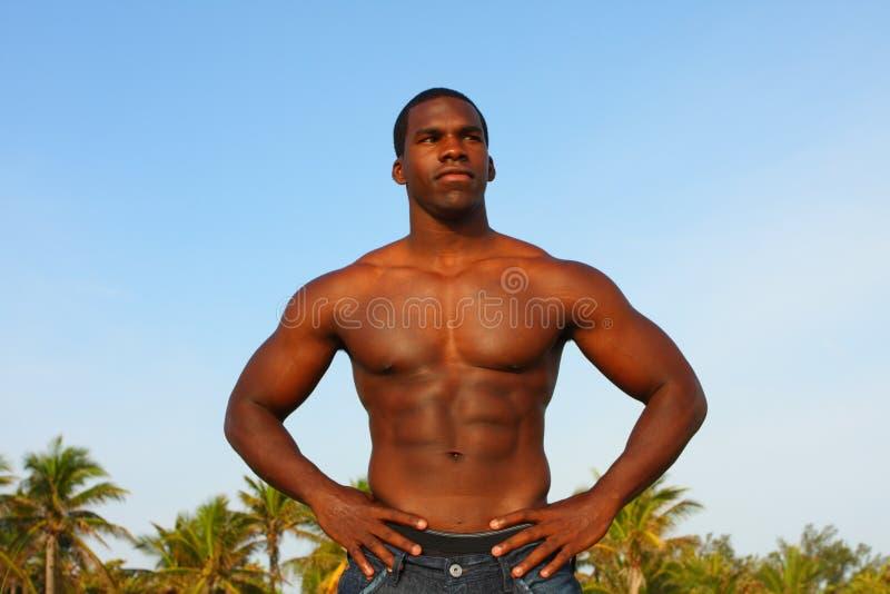 Bodybuilder, der für die Kamera aufwirft lizenzfreies stockfoto