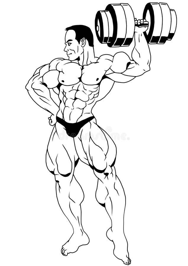Bodybuilder, der mit Dummköpfen aufwirft vektor abbildung
