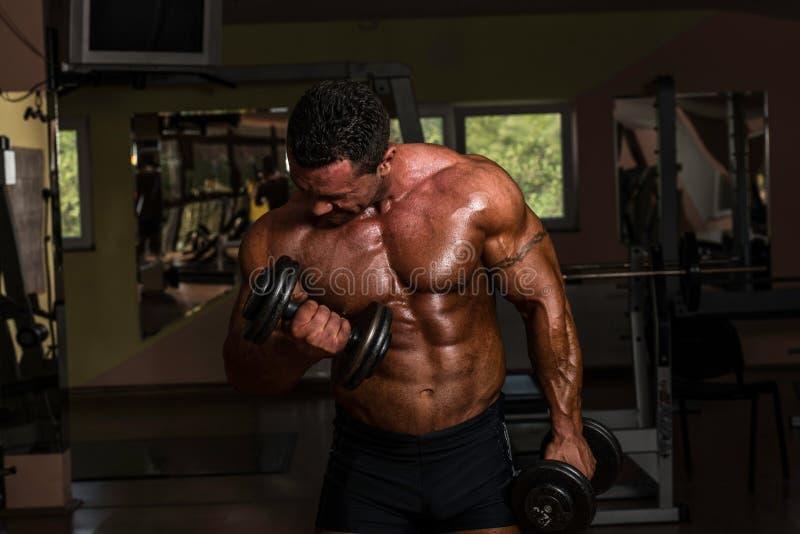Bodybuilder, der Schwergewichts- Übung für Bizeps mit Dummkopf tut lizenzfreie stockbilder