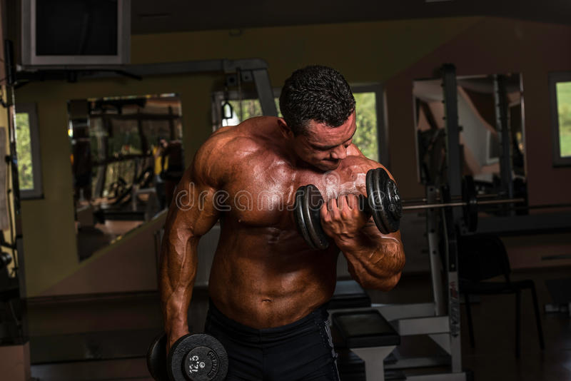 Bodybuilder, der Schwergewichts- Übung für Bizeps mit Dummkopf tut lizenzfreie stockfotos