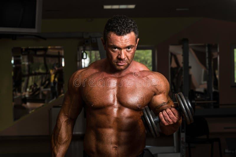 Bodybuilder, der Schwergewichts- Übung für Bizeps mit Dummkopf tut stockfoto