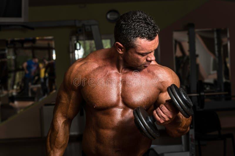 Bodybuilder, der Schwergewichts- Übung für Bizeps mit Dummkopf tut lizenzfreies stockbild
