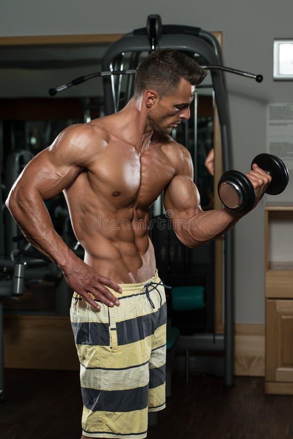 Bodybuilder die Bicepsen met Domoren uitoefenen stock foto's