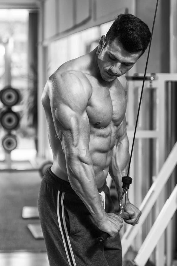 Bodybuilder die triceps uitoefenen stock fotografie