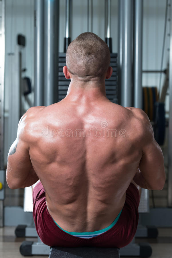Bodybuilder Doing Heavy Weight Exercise For Back. Healthy Male Doing Back Exercises In The Gym stock photo
