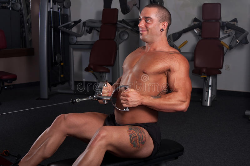 Bodybuilder exercising. In the gym stock photography