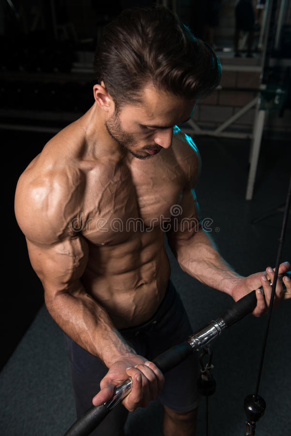 Bodybuilder Exercising Biceps royalty free stock photo