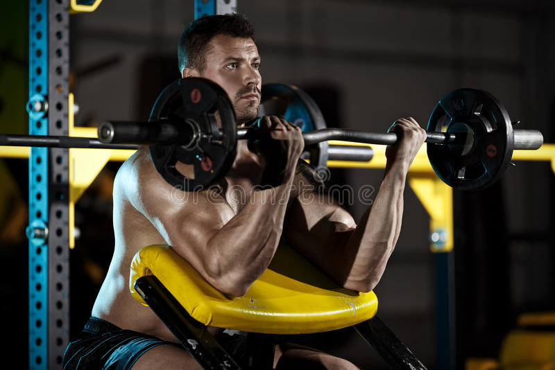 Bodybuilder exercising with weights royalty free stock image