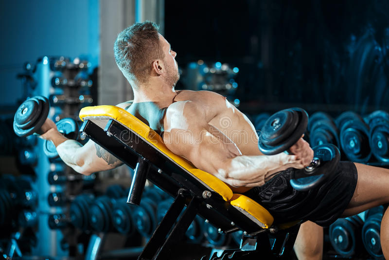 Bodybuilder exercising with weights stock photography