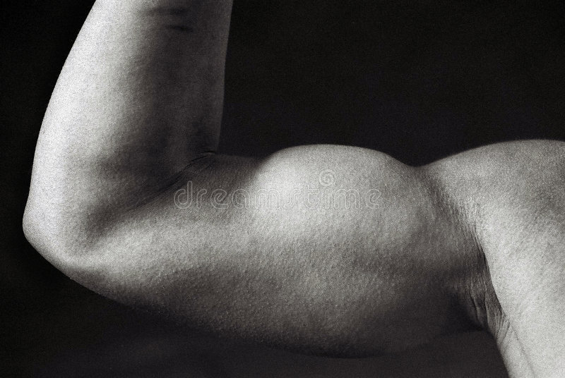 Bodybuilder fêmea imagem de stock royalty free
